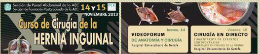 Curso Anual sobre Cirugía de la Hernia Inguinal